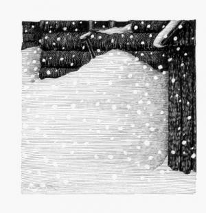 35 -  Domattina la neve...