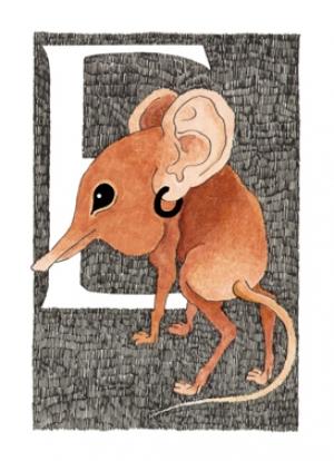Elefantuolo di Rouzet